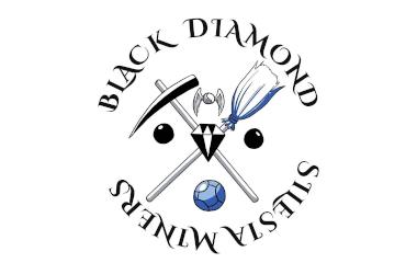 Sekcja Quidditcha Black Diamond Silesia Miners